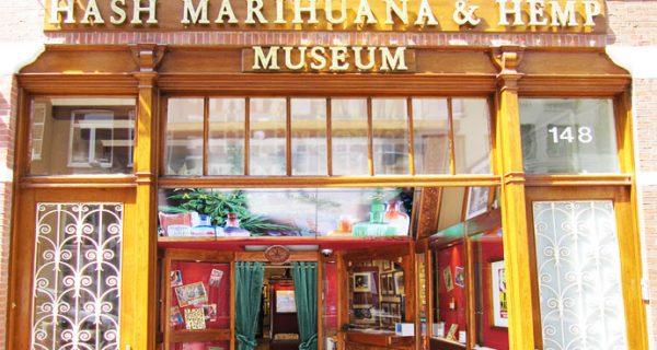 Музей марихуаны, гашиша и конопли, Фото hiveminer.com