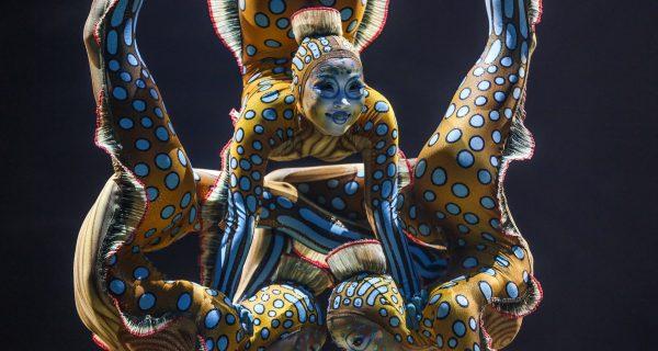 Cirque du Soleil - гимнастическое шоу, Фото time.com